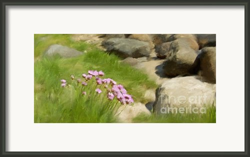 Stony Beach Impression Framed Print By Lutz Baar