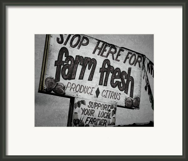 Stop Here Framed Print By Joan Carroll