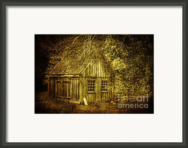 Stories Within Framed Print By Andrew Paranavitana