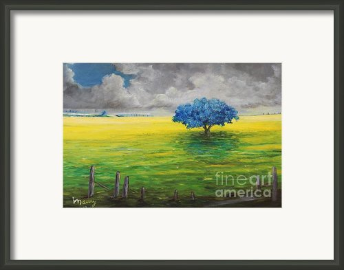 Stormy Clouds Framed Print By Alicia Maury