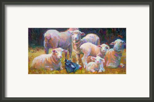 Stranger At The Well - Spring Lambs Sheep And Hen Framed Print By Talya Johnson