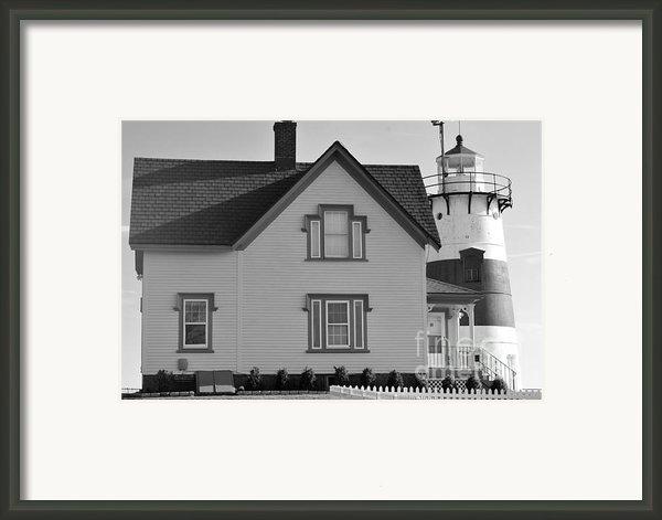Stratford Point Framed Print By Catherine Reusch  Daley