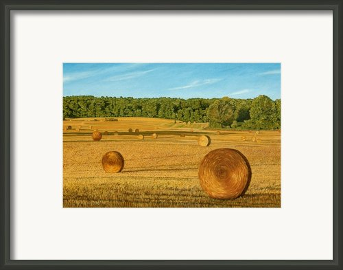 Straw Wheels - North Pickering Framed Print By Allan Omarra
