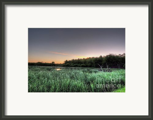 Streaky Swamp Sunrise Framed Print By Deborah Smolinske