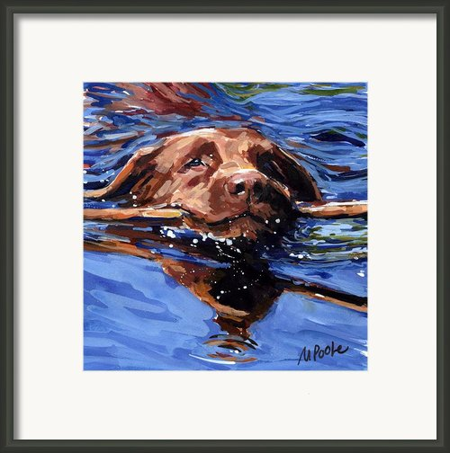 Strong Swimmer Framed Print By Molly Poole