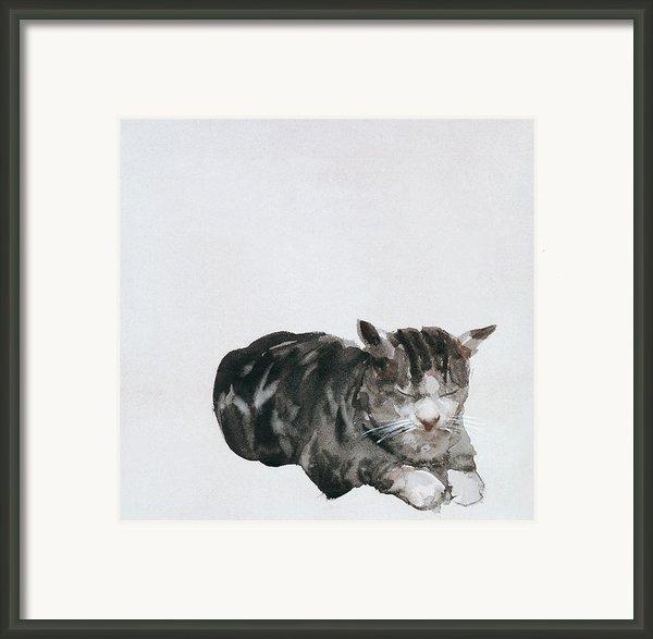 Study Of Cat Framed Print By Giuseppe De Nittis