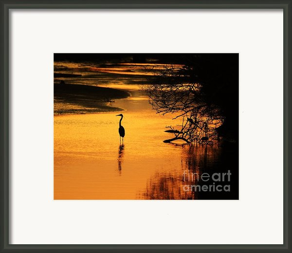 Sublime Silhouette Framed Print By Al Powell Photography