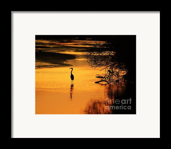 Sublime Silhouette Framed Print By Al Powell Photography Usa