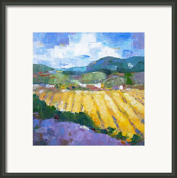 Summer Field 2 Framed Print By Becky Kim
