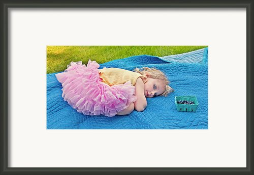 Summer Rest With Blueberries Framed Print By Valerie Garner