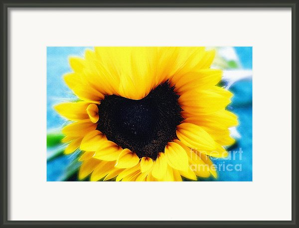 Sunflower In Heart Shape Framed Print By Kristin Kreet