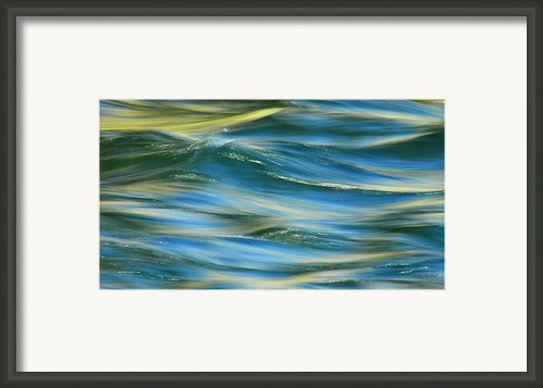 Sunlight Over The River Framed Print By Donna Blackhall