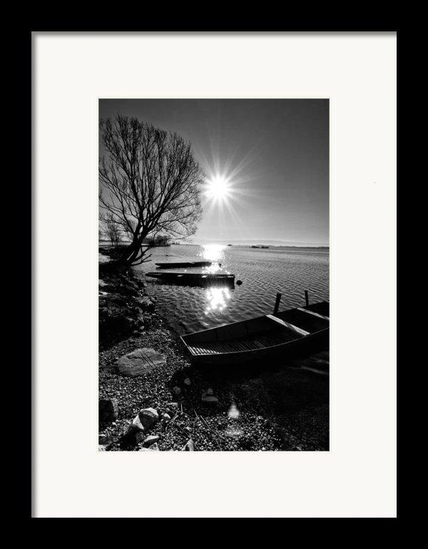 Sunny Day Framed Print By Davorin Mance