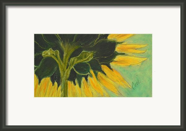Sunny Side Up Framed Print By Cori Solomon