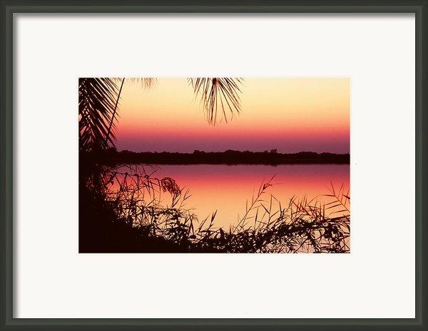 Sunrise On The Okavango Delta Framed Print By Stefan Carpenter