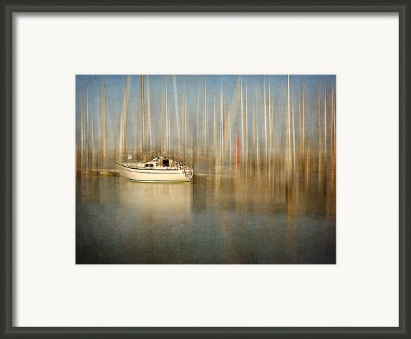 Sunset Sail Framed Print By Amy Weiss