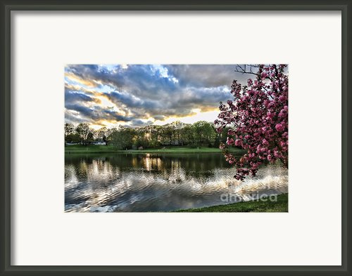 Sunset Southern  Framed Print By Chuck Kuhn