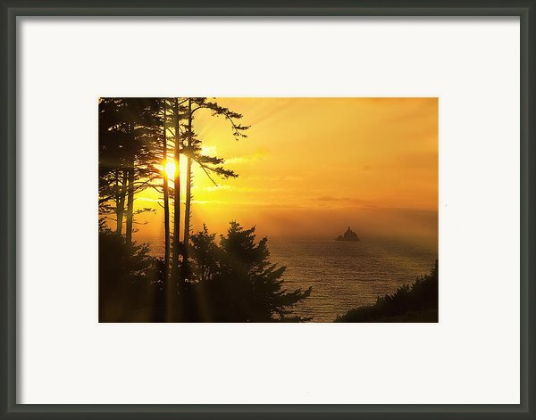 Sunset Thru The Trees Framed Print By Andrew Soundarajan