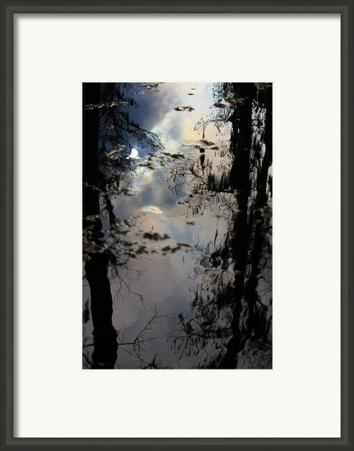 Sunshadow Framed Print By Rdr Creative