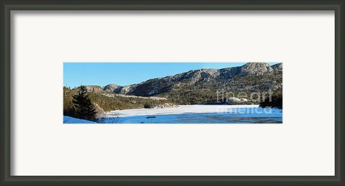 Sunshine - Shadows - Snowmobile Tracks Framed Print By Barbara Griffin