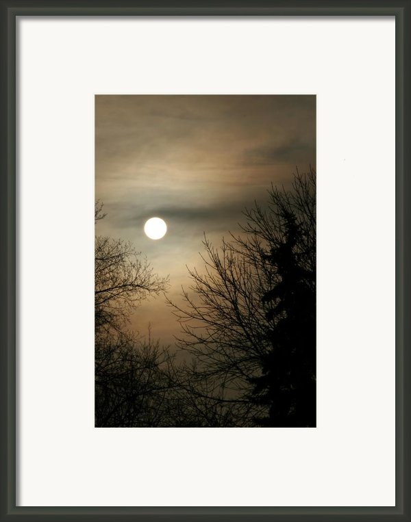 Super Sunday Framed Print By Steve Augustin