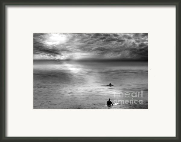 Surfing With The Dolphin Framed Print By Artist And Photographer Laura Wrede