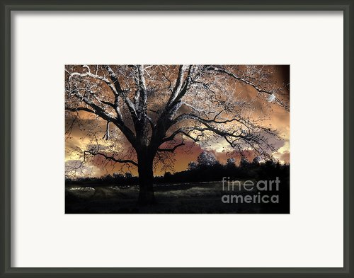 Surreal Fantasy Gothic Trees Nature Sunset Framed Print By Kathy Fornal