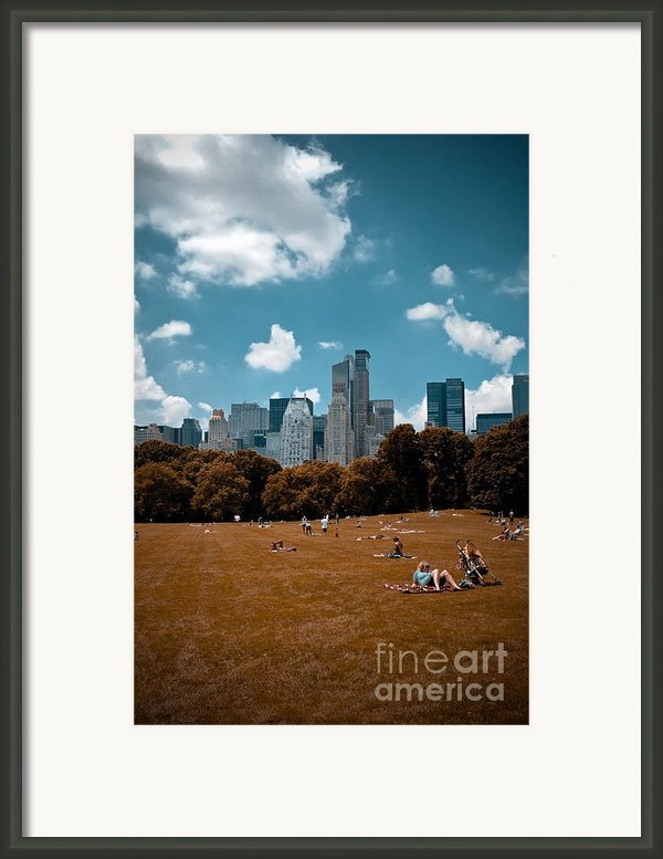 Surreal Summer Day In Central Park Framed Print By Amy Cicconi