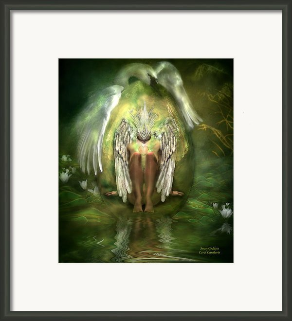 Swan Goddess Framed Print By Carol Cavalaris