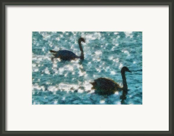 Swan Lake Framed Print By Ayse T Werner