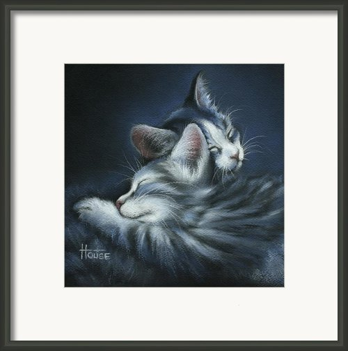 Sweet Dreams Framed Print By Cynthia House