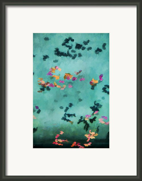 Swirling Leaves And Petals 5 Framed Print By Scott Campbell