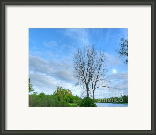 Swirly Sky And Tree Framed Print By Deborah Smolinske