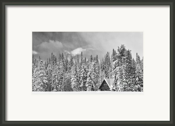 Taking Refuge - Grand Teton Framed Print By Sandra Bronstein