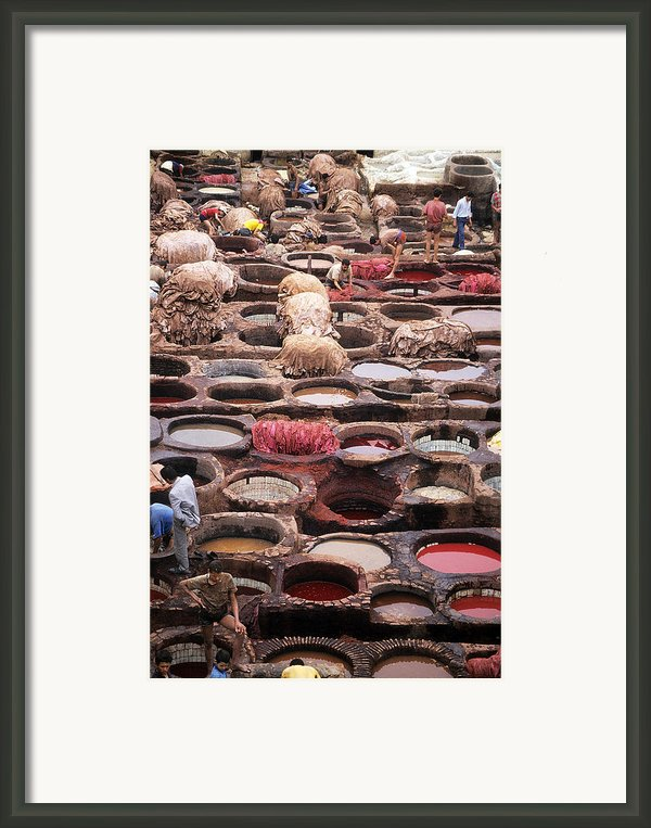 Tanning Vats In Morocco Framed Print By Carl Purcell