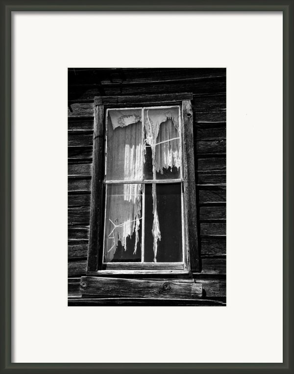 Tattered And Torn Framed Print By Cat Connor