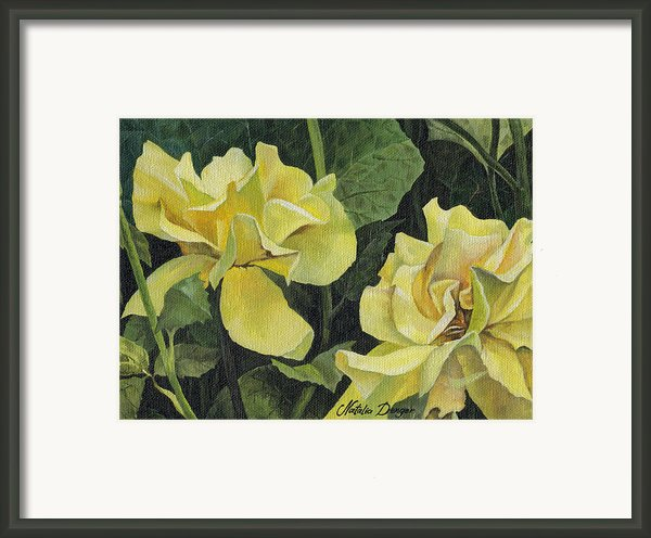 Tea Rose Framed Print By Natasha Denger