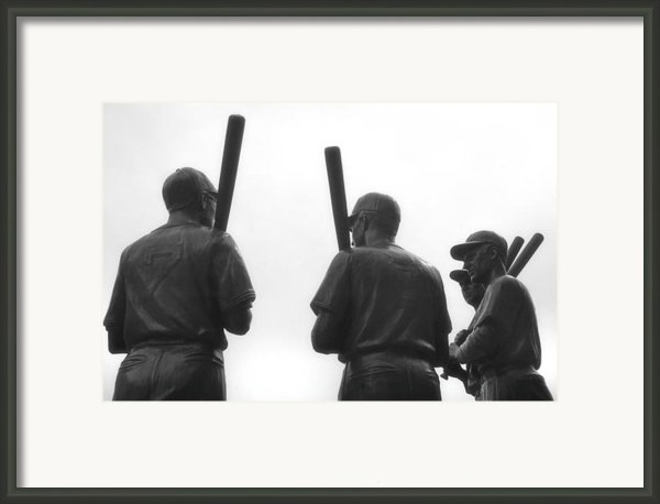 Teammates Framed Print By Joann Vitali