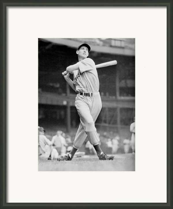 Ted Williams Swing Framed Print By Sanely Great
