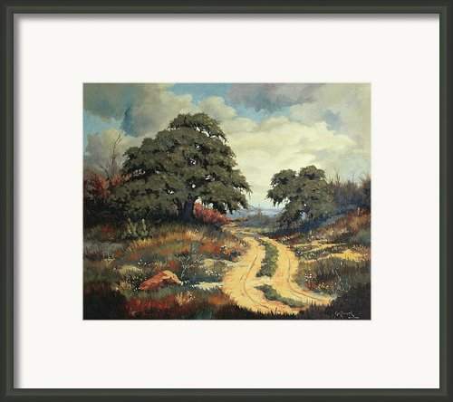 Texas Hill Country Framed Print By Bob Hallmark