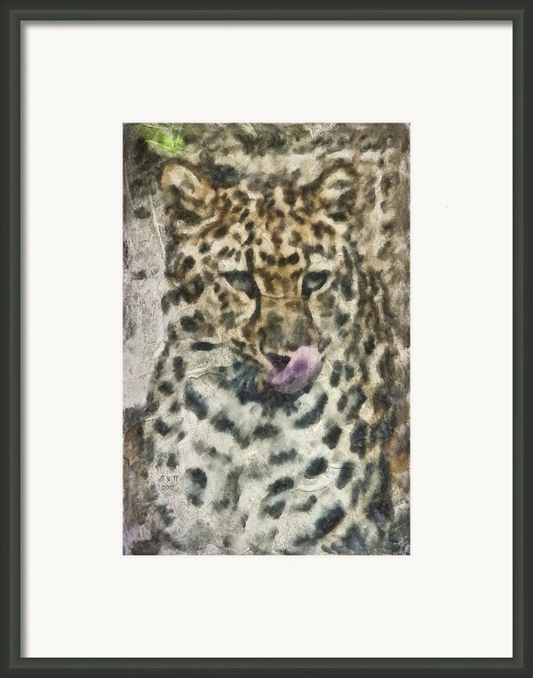 That Was Delicious Framed Print By Trish Tritz