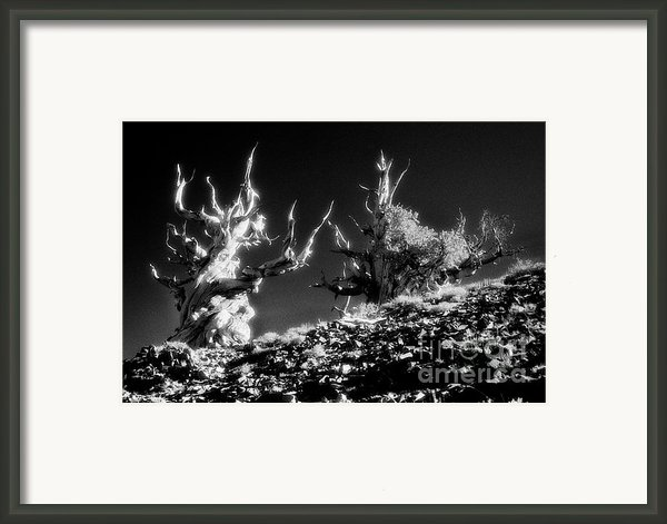 The Ancients - 1001 Framed Print By Paul W Faust -  Impressions Of Light