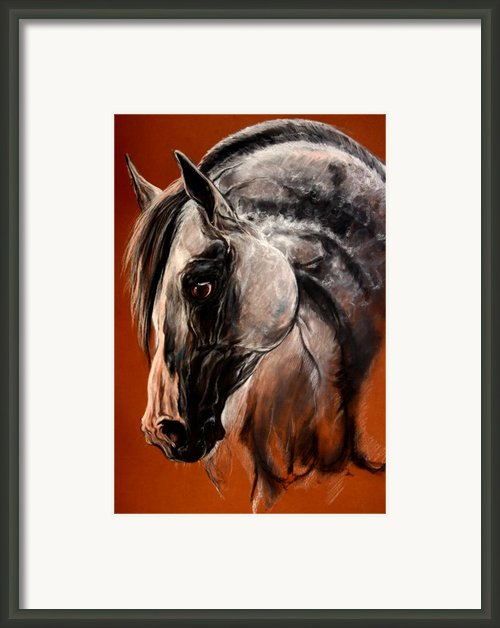 The Arabian Horse Framed Print By Angel  Tarantella