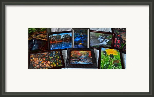 The Art Collector Framed Print By Robert Harmon