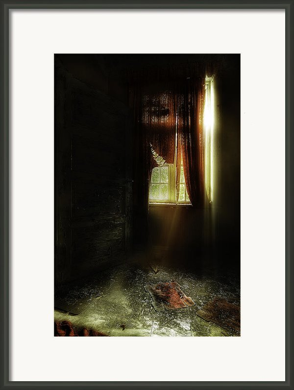 The Asylum Project - Let There Be More Light Framed Print By Erik Brede