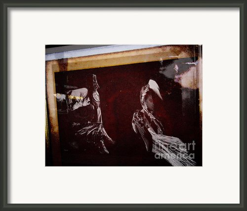 The Beauty Of Wisdom Framed Print By Steven  Digman
