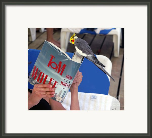 The Bird Brain Framed Print By Madeline Ellis