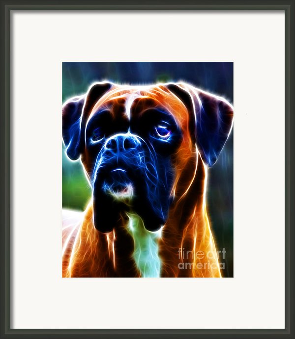 The Boxer - Electric Framed Print By Wingsdomain Art And Photography