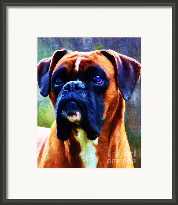 The Boxer - Painterly Framed Print By Wingsdomain Art And Photography
