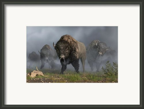 The Buffalo Vanguard Framed Print By Daniel Eskridge